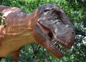 T-Rex della mostra sui dinosauri a Torino
