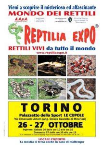 mostra di rettili a Torino