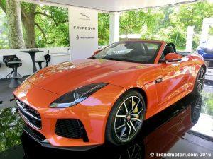 Auto novità esposte al Salone dell'Auto di Torino